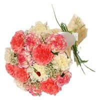 10 Mixed Colored Carnations